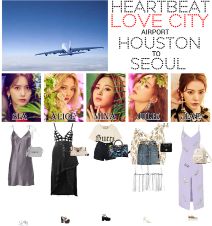[HEARTBEAT] AIRPORT | HOUSTON TO SEOUL