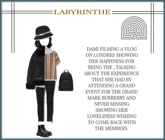 Labyrinthe dami VLOG