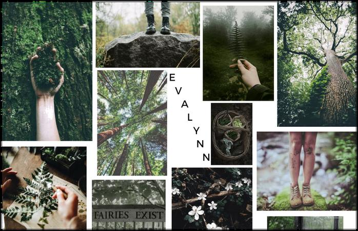 Name Board Aesthetic: Evelynn