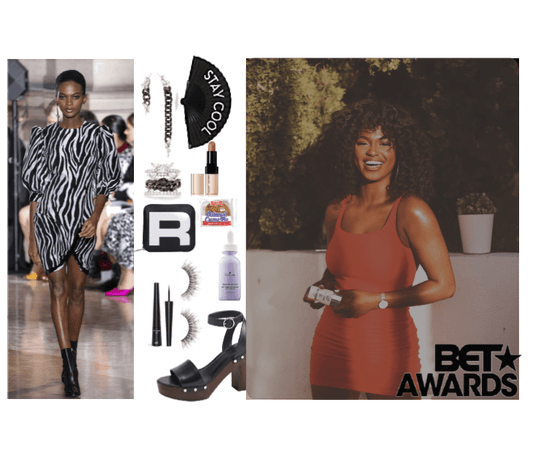 zebra ~ Brooklyn ~ BET Awards