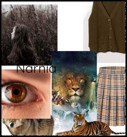 My oc of Narnia