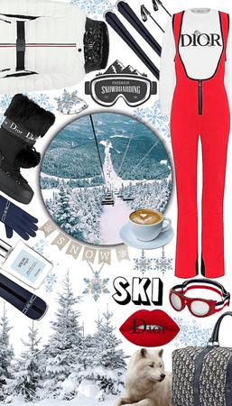 Dior Ski Resort