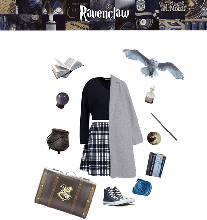 School Ravenclaw
