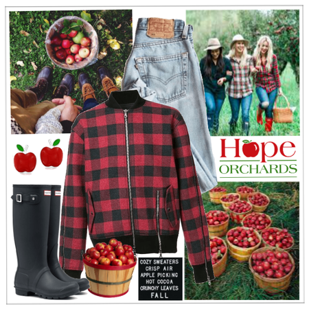 Apple Picking!