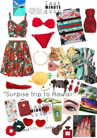 last minute trip to Hawaii