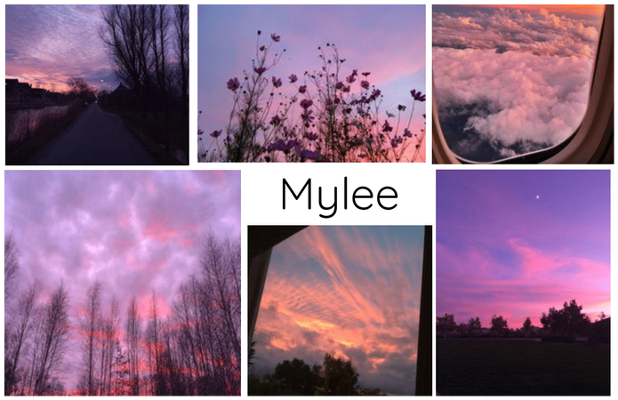 Name Aesthetic Board : Mylee