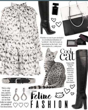 Feline Fashion - Egyptian Mau cat