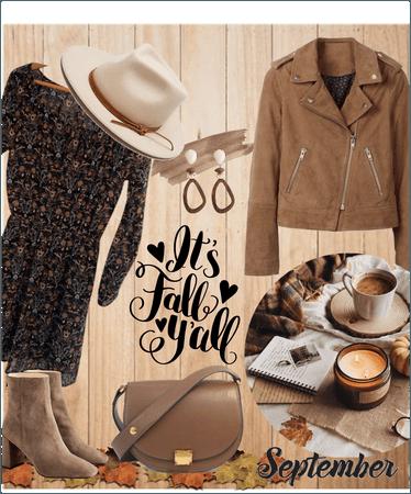 It's fall 🐿️