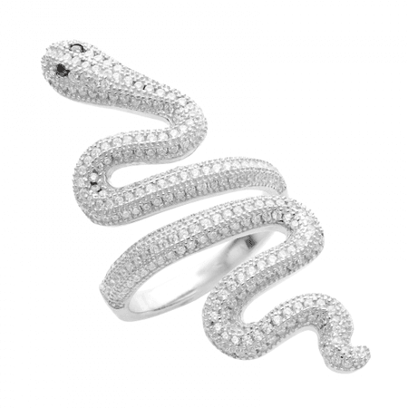 Silver Snake Ring | Taylor Swift Official Online Store