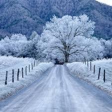 solstice winter - Google Search