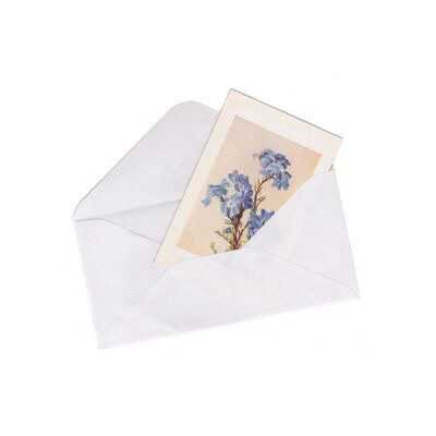 letter and flower postcard