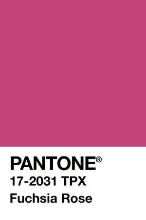 PANTONE Color: Fucsia Rose