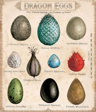 Harry Potter - Dragon Eggs