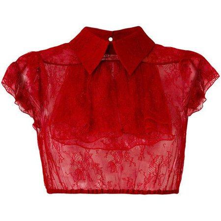 Red Lace Collared Crop Top