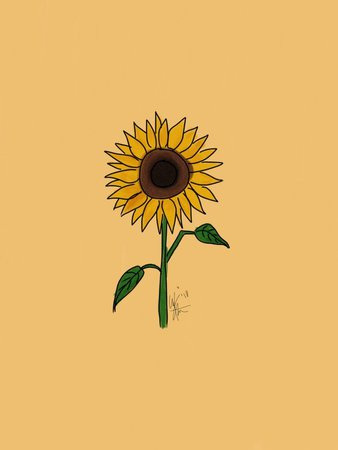 sunflower aesthetic - Google Search