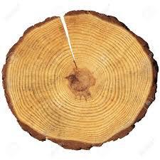 wood - Google-keresés