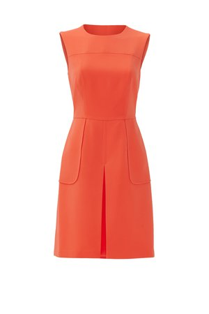 Orange High Tea Dress by Slate & Willow for $30   Rent the Runway