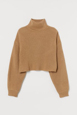 Cropped Turtleneck Sweater - Beige