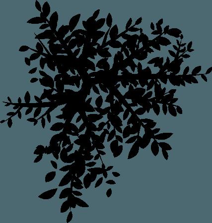 bike-tree-shadow.png (870×916)