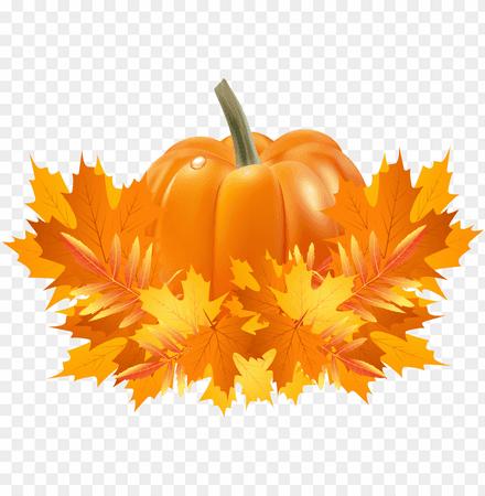 transparent-library-apple-and-pumpkin-page-border-clipart-pumpkin-fall-leaves-11563006395q8ji3vvigz.png (840×859)