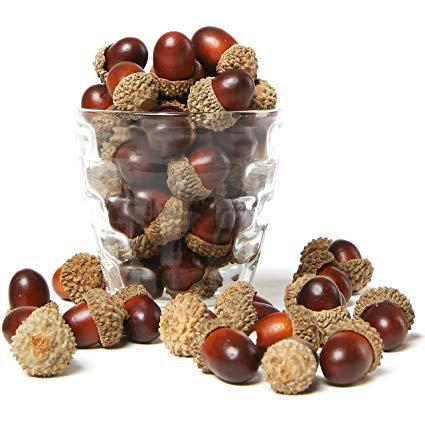 Amazon.com: MyGift 100 Pieces Brown Assorted Artificial Acorn Caps, Autumn Vase Filler Decorations: Home & Kitchen