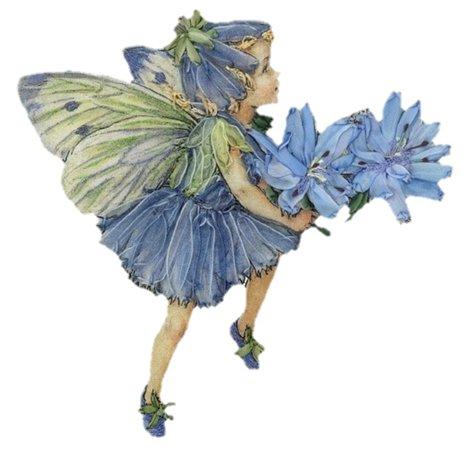 periwinkle fairy child