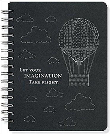 Take Flight Journal (Notebook, Diary) (Black Rock)