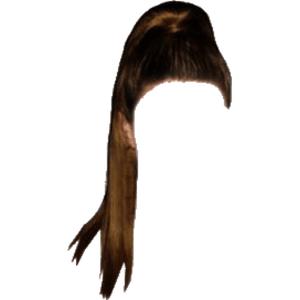 Brown Hair Ponytail