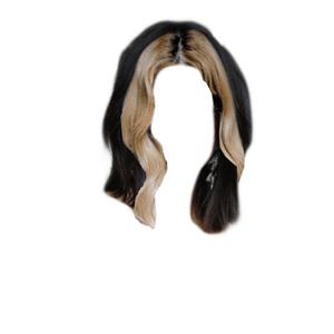 Short -ish Dark Brown Hair With Blonde BANG PNG
