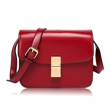 Olyphy Designer Crossbody Bag Purse for Women, Classic Box Shoulder Bag Vintage Tofu Handbag (Red): Handbags: Amazon.com