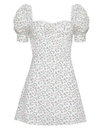 Jennie Dkwtd dress