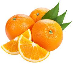 oranges - Google Search