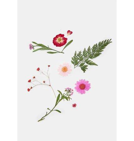 SHRINE Pink Pressed Flower Cosmetic Decals | Dolls Kill