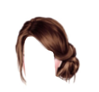 Brown Hair PNG Bun
