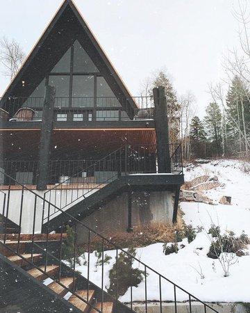 goth cabin - Google Search