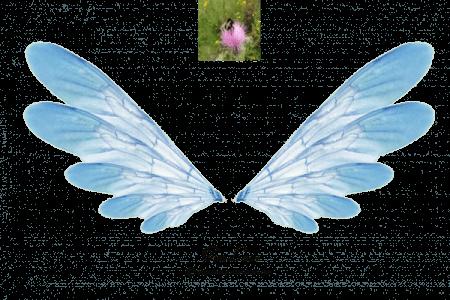 Blue Fae Wings