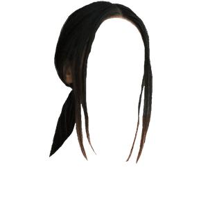 low ponytail edit png