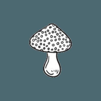 (99+) transparent pngs   Tumblr