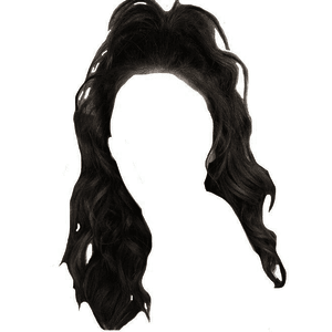 half up half down hair edit png