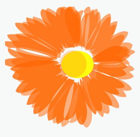 spring break orange - Google Search