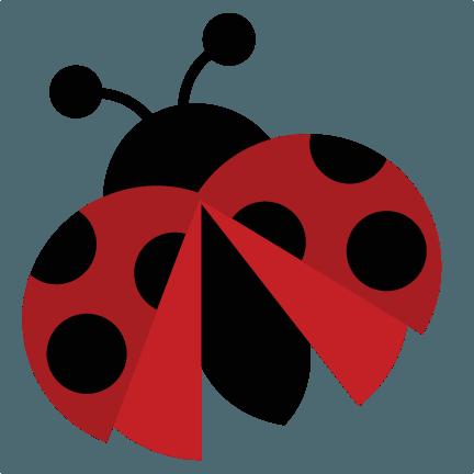 ladybug transparent - Google Search
