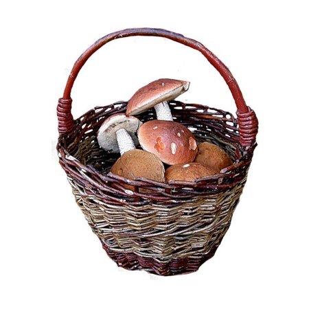 basket of mushrooms