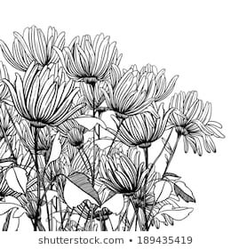 Monochrome Graphic Flowers Stock-Vektorgrafik (Lizenzfrei) 189435419