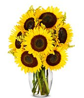 Fresh Sunflower Harvest at From You Flowers