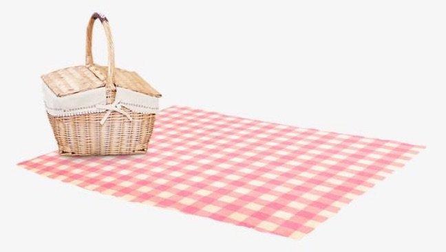 picnic basket & blanket