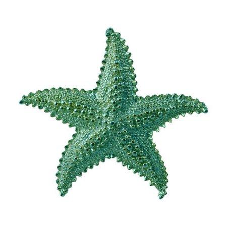 green sea star