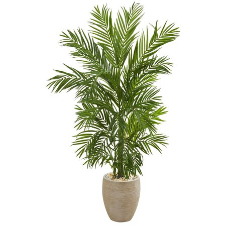 Bay Isle Home Areca Floor Palm Tree in Planter & Reviews   Wayfair