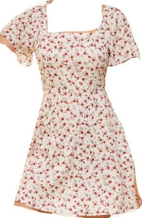 vintage sun dress