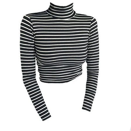Black & White Long Sleeve Stripe Turtle Neck