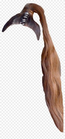 #hair #arianagrande #arianahair #arianagrandehair #ponytail - Driftwood, HD Png Download - 1024x2114(#2269675) - PngFind